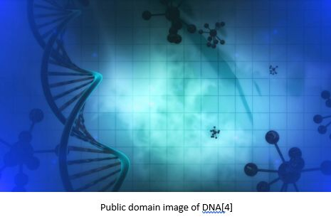 Genetic Genealogy by popular US professional genealogy services, Lineages: image of a double helix.