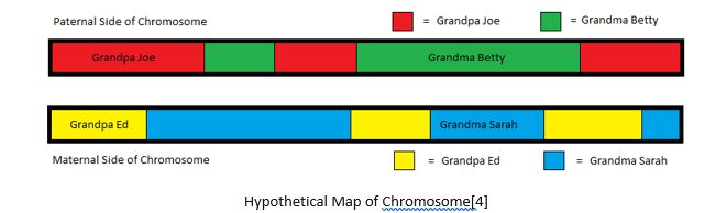 Genetic Genealogy by popular US professional genealogy services, Lineages: image of a chromosome map.