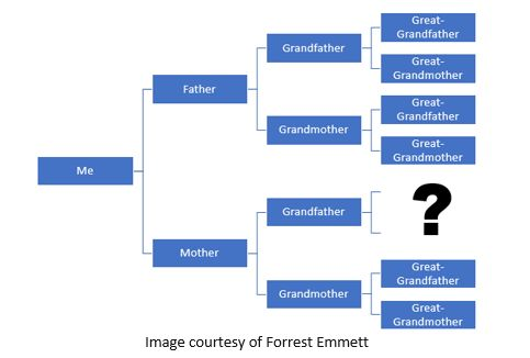 Genetic Genealogy by popular US professional genealogy services, Lineages: image of a family pedigree chart.