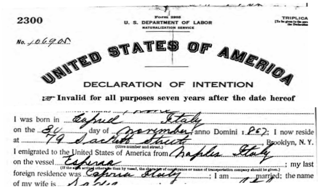 Italian Ancestors by popular US genealogy services, Lineages: image of a United States of America declaration of intention document.