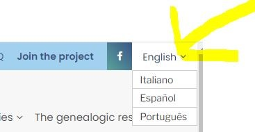 Italian Vital Records by popular US professional genealogy services, Lineages: screenshot image of ancestry webpage.