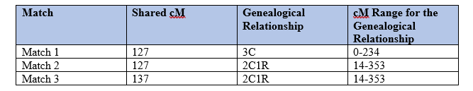 Parent Child Relationship by popular US professional Genealogy Services, Lineages: image of a DNA match chart.