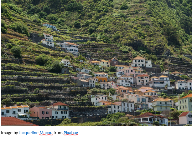 Madeira Research by popular US professional genealogy services, Lineages: image of white stucco and red tile roof buildings on a hillside.
